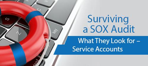 auditor it resume sox